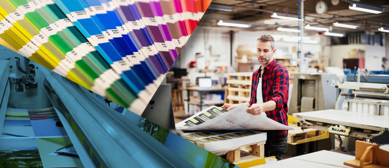 Técnico trabajando con cartas de colores