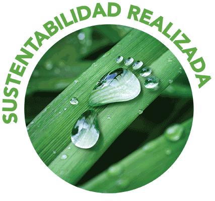 icono para Sustentabilidad Realizada